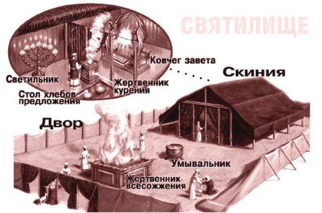konstruktsiya-skinii