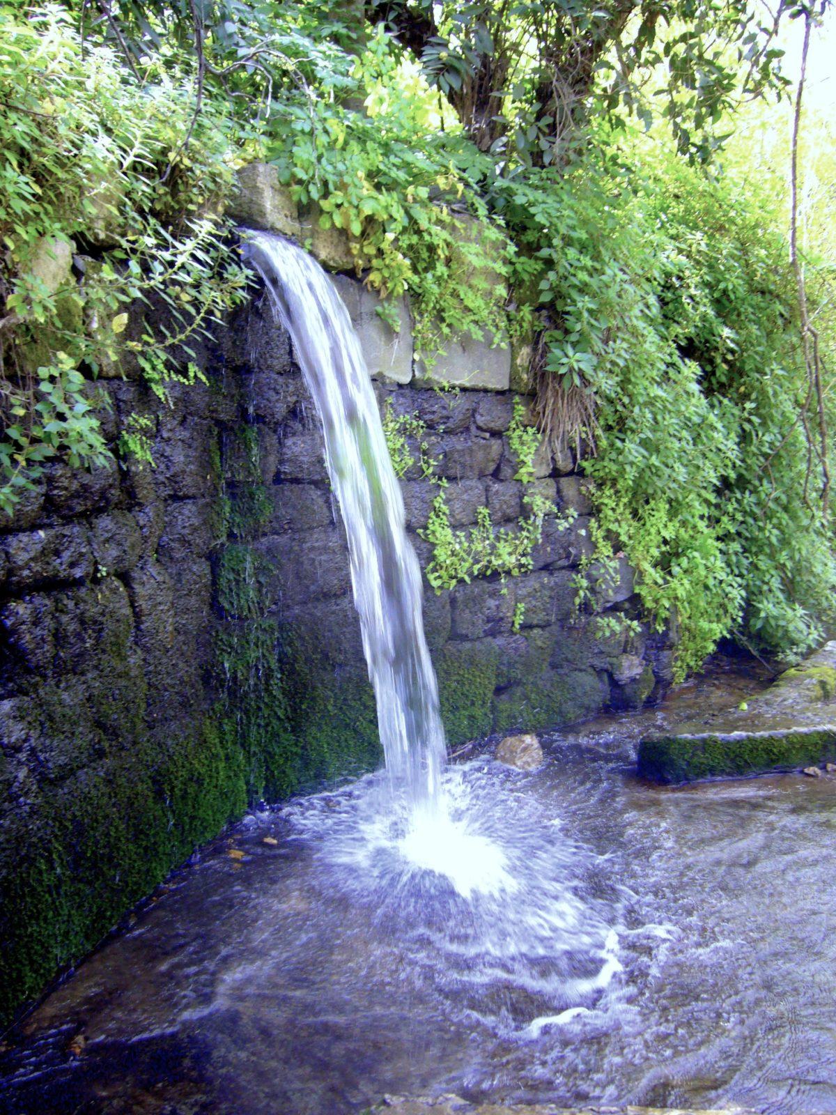 Golan Banias Nature Reserve