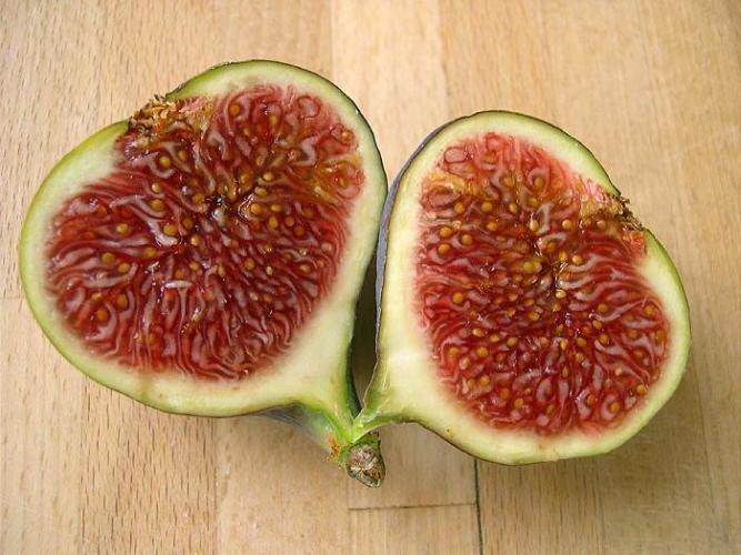sotsvetie-inzhira-razrez-vidny-semena-plody