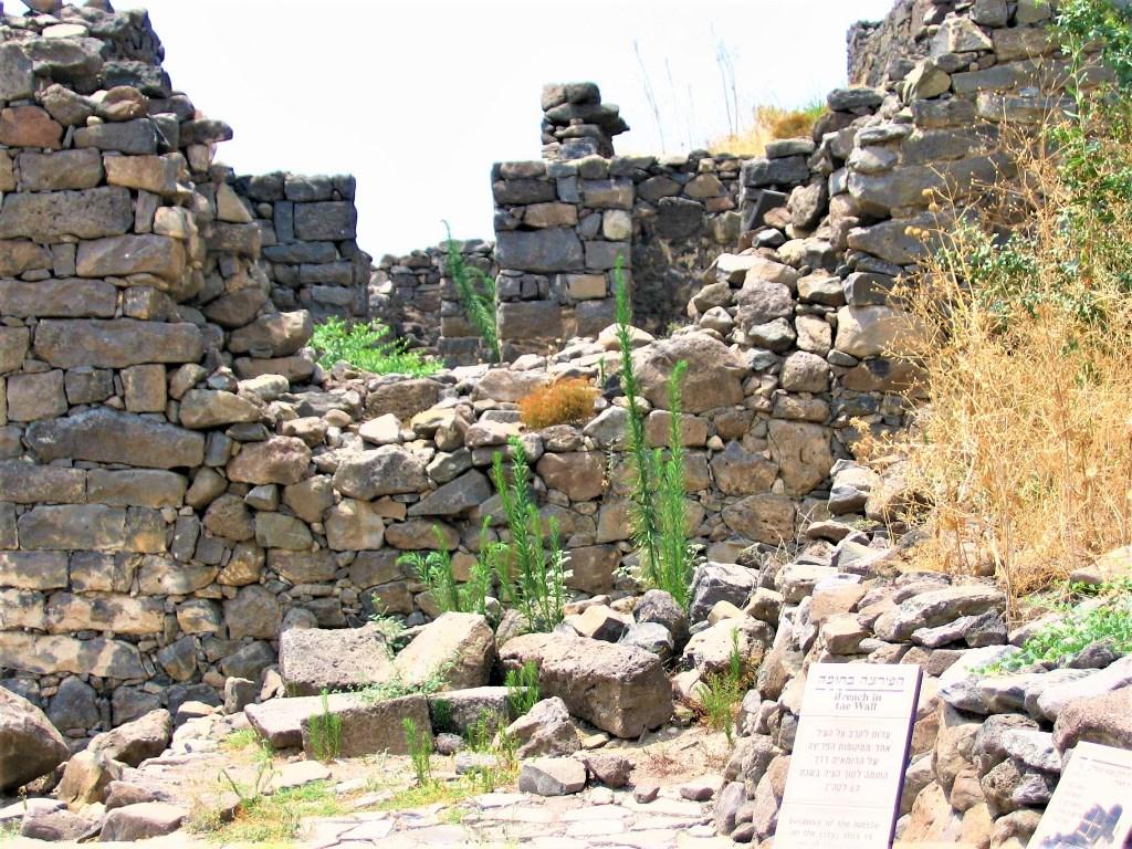 gamla-ruiny-krepostnoj-steny